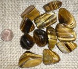 Tiger Eye Shapes, and Tumbles